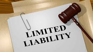 limited liability partnership in kerala